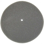 ProTeam Backpack Vacuum Filter OEM # 103343